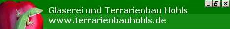 Terrarienbau Hohls